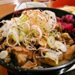 パチンコ感謝の旅2 中井PAで夕食