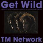 ゲワイ(Get Wild)