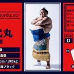 Abema TVの大相撲中継が異世界